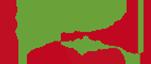Evo-Tune Logo